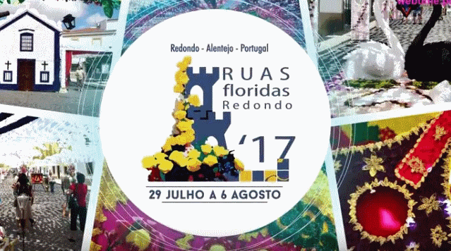 AssistaaoSpotdasRuasFloridas2017_C_0_1594713223.