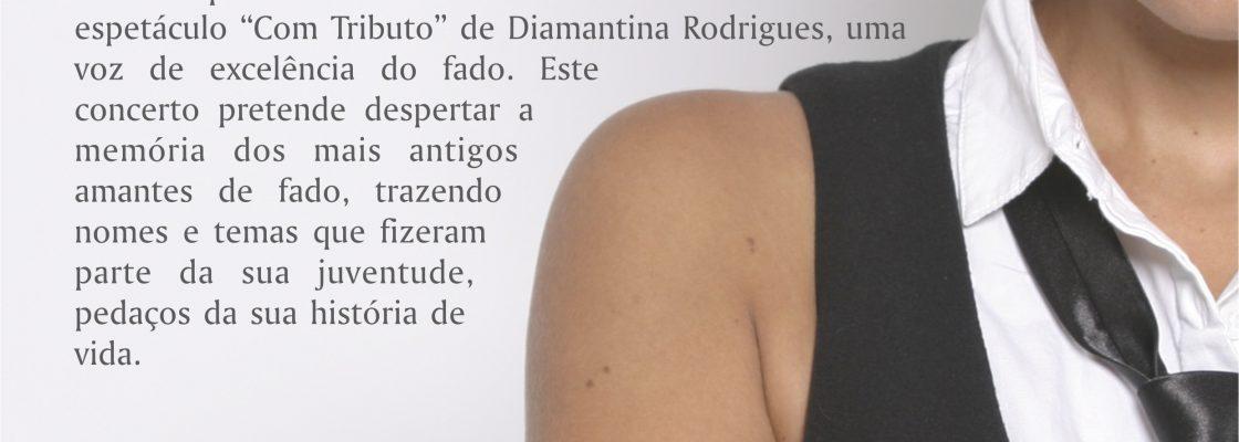 DiaInternacionaldaMulherDiamantina_F_0_1594719452.