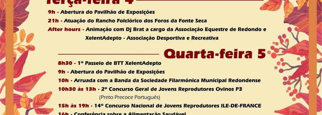 FeiradeSoFrancisco_F_0_1594719702.