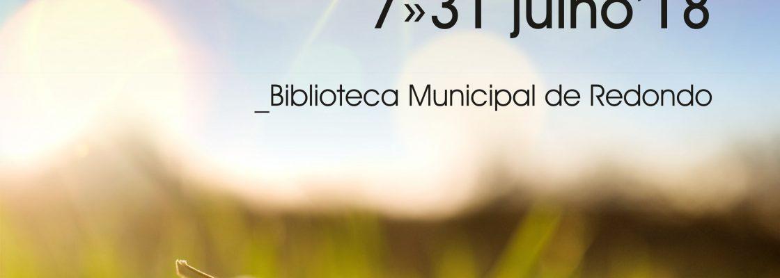 LiteraturadeVero_F_0_1594718475.