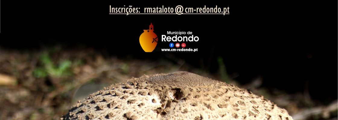 PasseioMicolgico_F_0_1594718278.