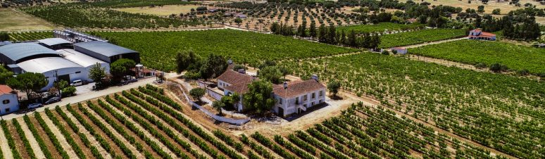 Ségur Estates Redondo Winery (10)