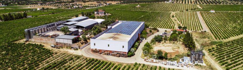 Ségur Estates Redondo Winery (12)