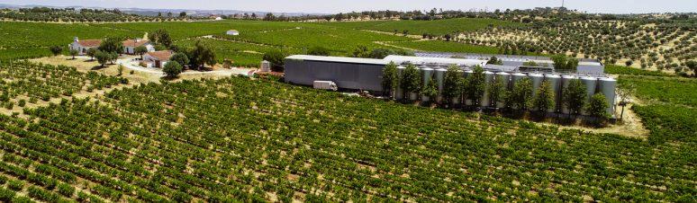 Ségur Estates Redondo Winery (13)