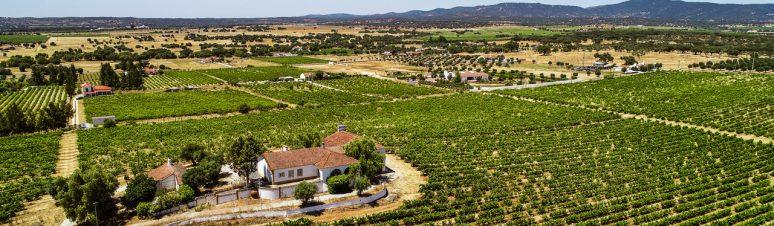 Ségur Estates Redondo Winery (9)