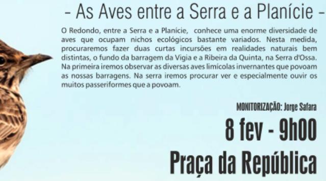 VeraRibeiraeOuviroCampo_C_0_1594717819.