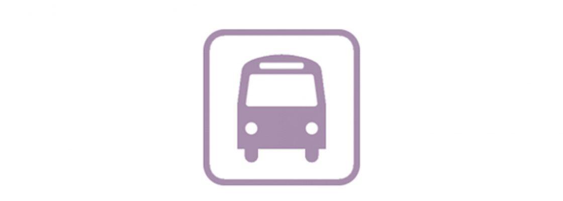 Horários dos transportes escolares rodoviários em vigor desde dia 17 de setembro de 2020