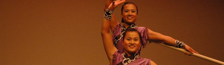 2009 - Circo acrobático de Xangai