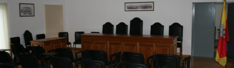 Assembleia Municipal (1)