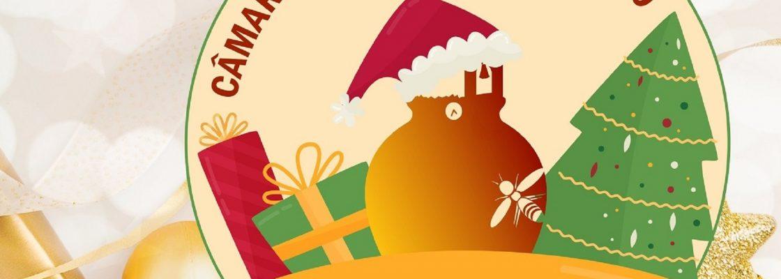 Câmara Municipal de Redondo vai entregar cabazes de Natal a reformados e pensionistas residentes...