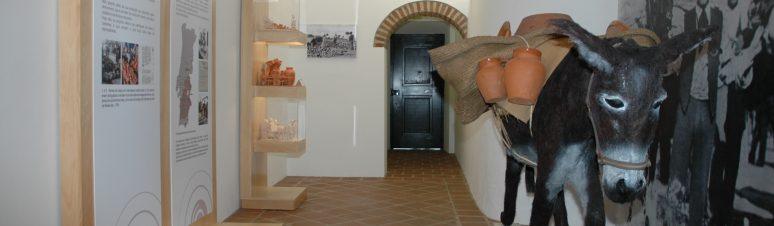 Museu Barro2