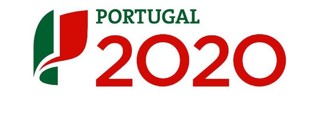 Candidaturas ao Programa de Apoio à Produção Nacional (Base Local) abertas até 15 de fevereiro
